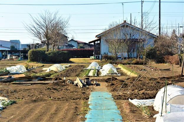 菜園・道具小屋撤去完了