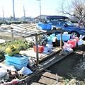 Photos: 道具小屋・床と屋根完了.