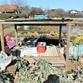 Photos: 道具小屋・床と屋根完了