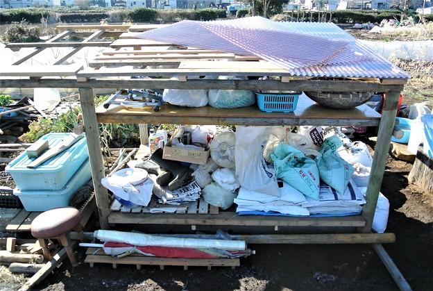 Photos: 棚完成・屋根張り開始