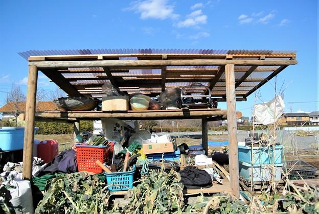 Photos: 屋根張り完了