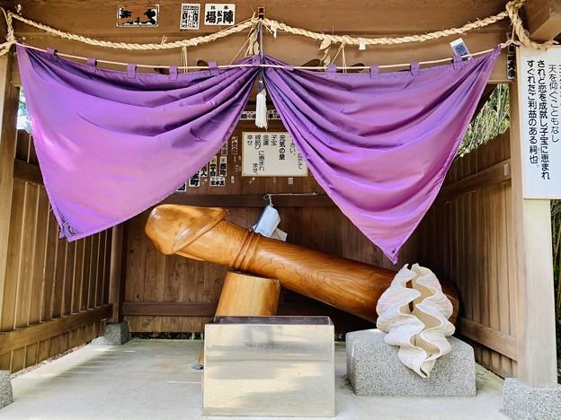 南房総市白浜 厳島神社 子宝像