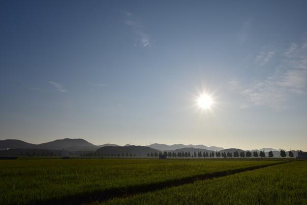 Photos: お気に入りの景色 夏