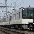 IMGP2609