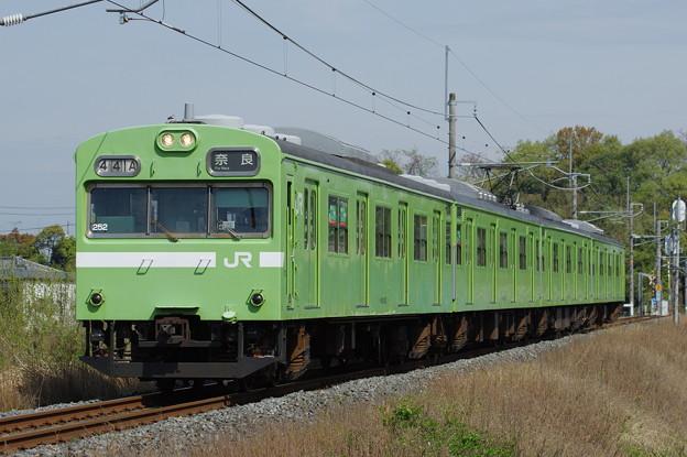 IMGP4439
