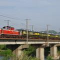 写真: 有田川でサロンカーくまの IMGP4964