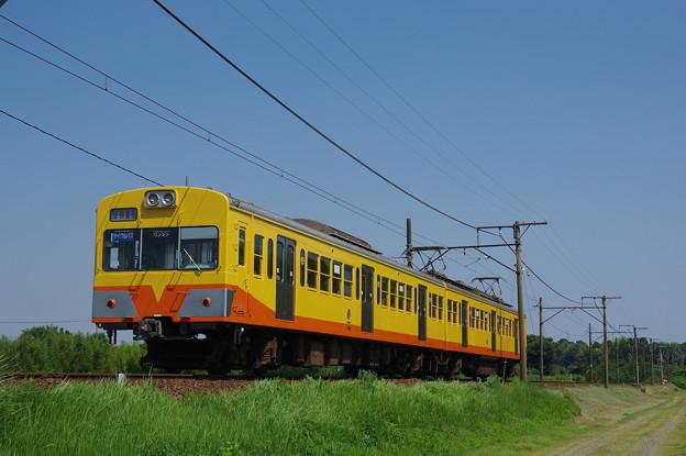 IMGP7475