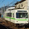 IMGP0372