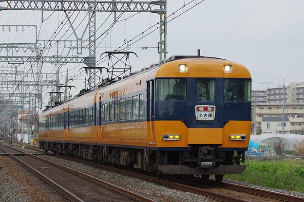 IMGP5375