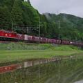Photos: 水鏡になった3092レ IMGP2438