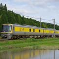 IMGP2603