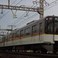 IMGP5248