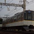 IMGP5254
