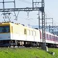 IMGP1599