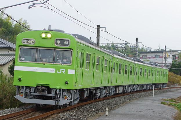 IMGP5552