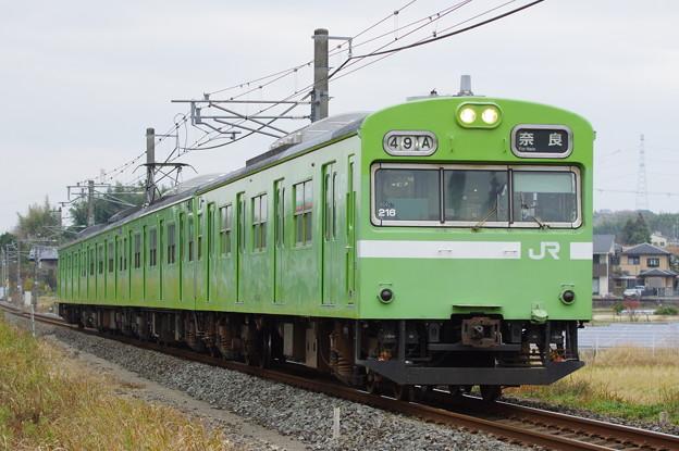 IMGP5592