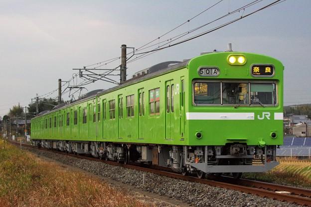 IMGP5639