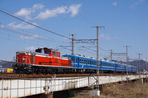 IMGP8736
