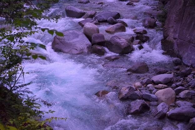 Photos: DSC_0221