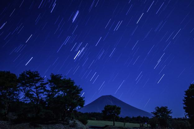 Photos: 月夜の晩に。。。