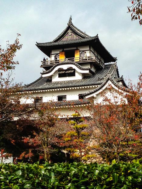 2014.11犬山城_edited