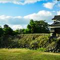Photos: 熊本城