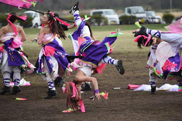 熊谷桜よさこい2017 dance company REIKA組6