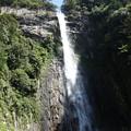 写真: 那智大滝