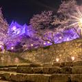 2018鶴山公園