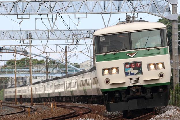 Photos: 185系 踊り子