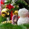 Photos: クリスマスだと言うのに