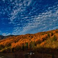 Photos: 秋は駆け足で