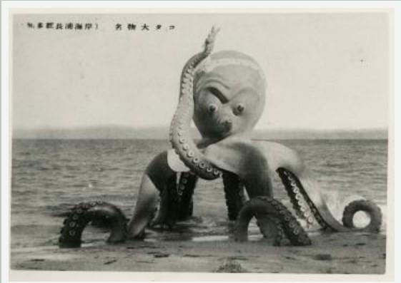 長浦海岸のタコ(知多市デジタル写真館)3