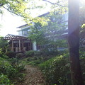 市房観光ホテルの庭 (1)