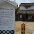 写真: もめん蔵 (2)