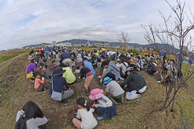 芋掘り大会 (12)