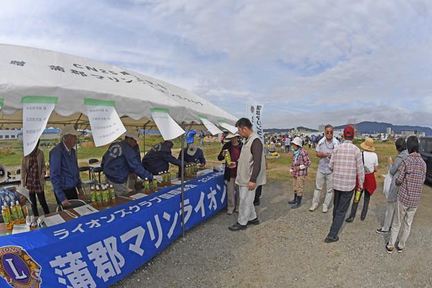 芋掘り大会 (25)