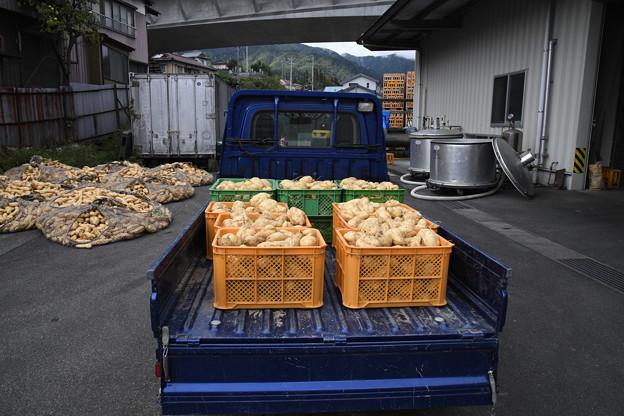 芋焼酎製造工程(喜久水) (1)