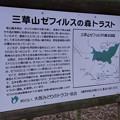 三草山ゼフィルスの森 (4)