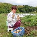 Photos: 畑の収穫