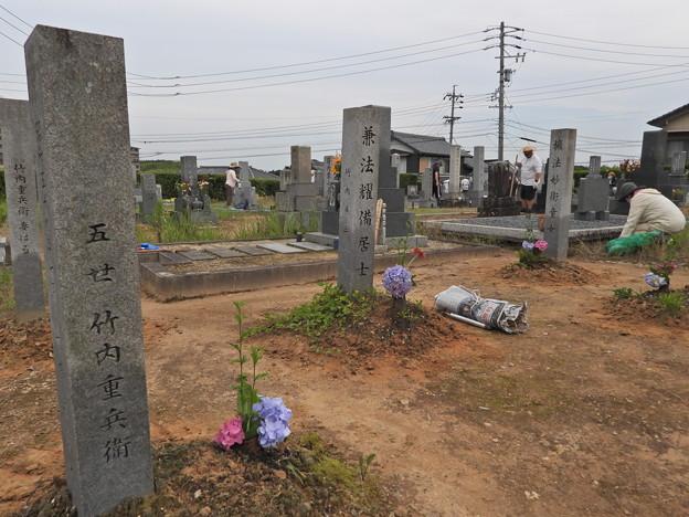 Photos: お墓掃除 (2)