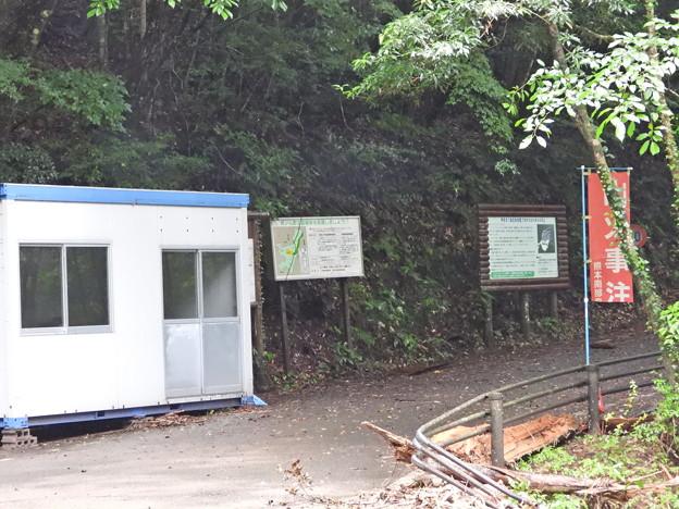 市房山キャンプ場 (5)