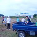 芋畑の草刈り (1)