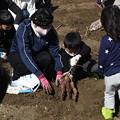 Photos: 芋掘り大会2020 (45)