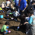 Photos: 芋掘り大会2020 (49)