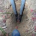 Photos: 山芋掘り用シャベル