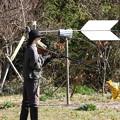 Photos: 猟銃を持つ案山子(大宇陀) (1)
