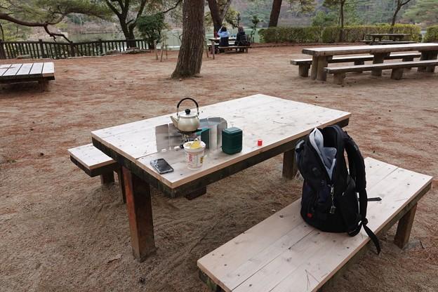 一月の再度山公園
