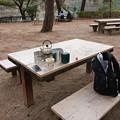 Photos: 一月の再度山公園