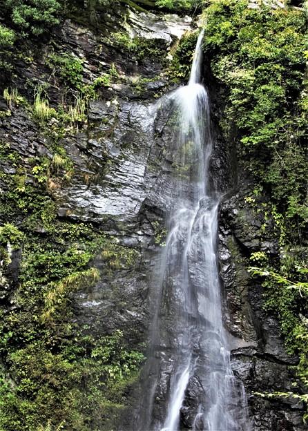Photos: 楊柳の滝